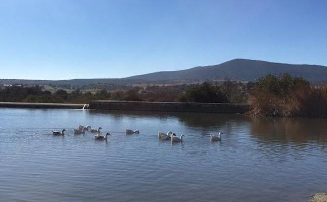 Más de 400.000 euros para la charca de pesca deportiva en el paraje Doña Blanca, en Don Benito