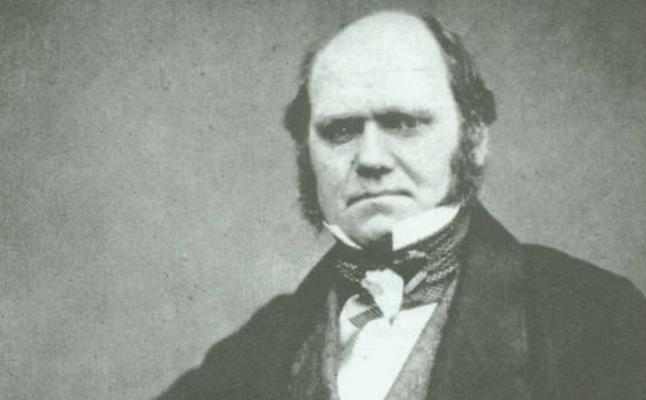 Resuelto el «misterio abominable» de Darwin sobre cómo las plantas con flores conquistaron el mundo