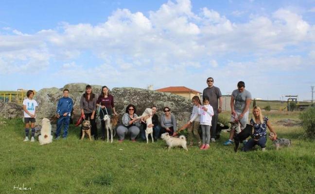 'Refugio Turgalium' recogió en Trujillo cerca de 40 perros abandonados en 2017