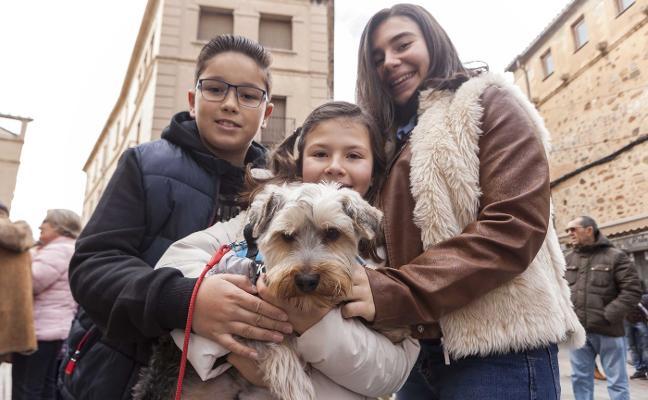Las mascotas se encomiendan a San Antón
