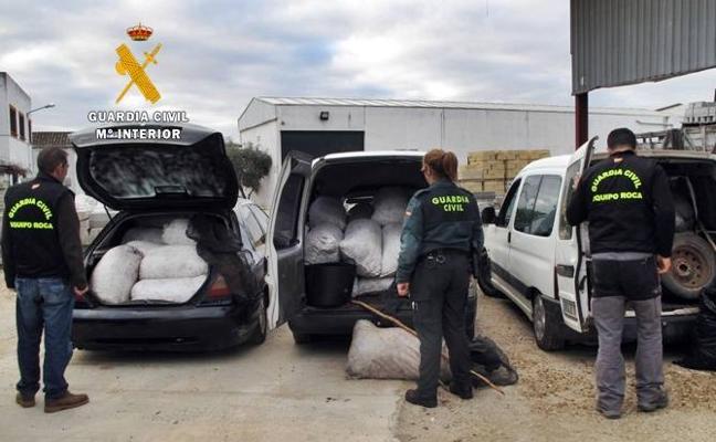 Seis detenidos por robar 12.500 kilos de aceitunas en Esparragalejo y Guareña