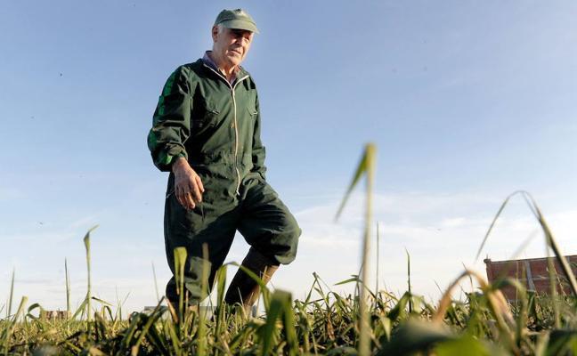 Los agricultores extremeños reciben 378,8 millones de euros del fondo Feaga