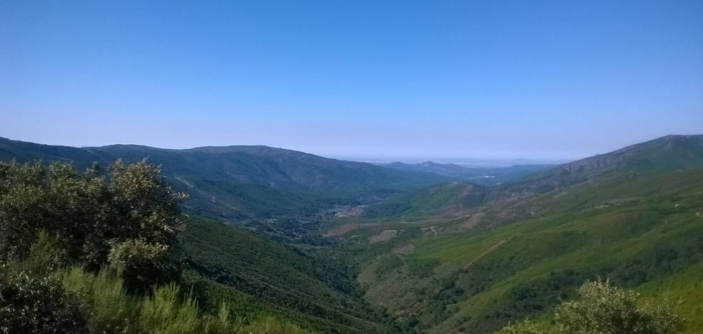 El mayor monte protector de la región toma forma