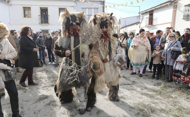 Más de medio centenar de Carantoñas rinden honor a San Sebastián en Acehúche