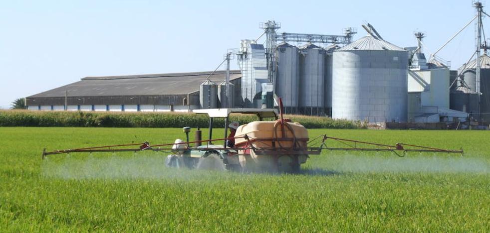 Autorización ambiental para una planta de arroz en Don Benito