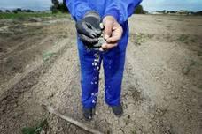 Los sindicatos piden al Gobierno medidas urgentes por la sequía