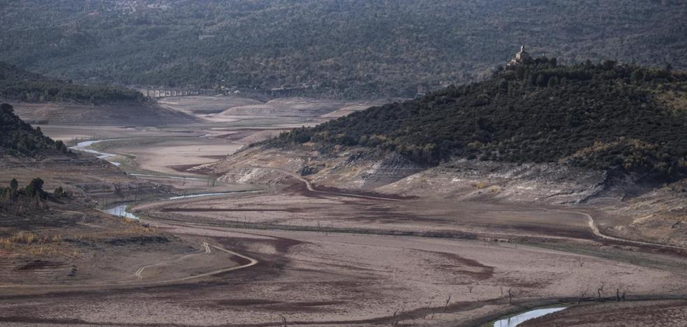 La CHT estudia restringir el regadío en el tramo medio-alto del Tajo