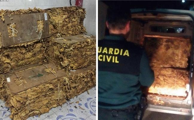 Interceptados 470 kilogramos de hoja seca de tabaco en la Vera