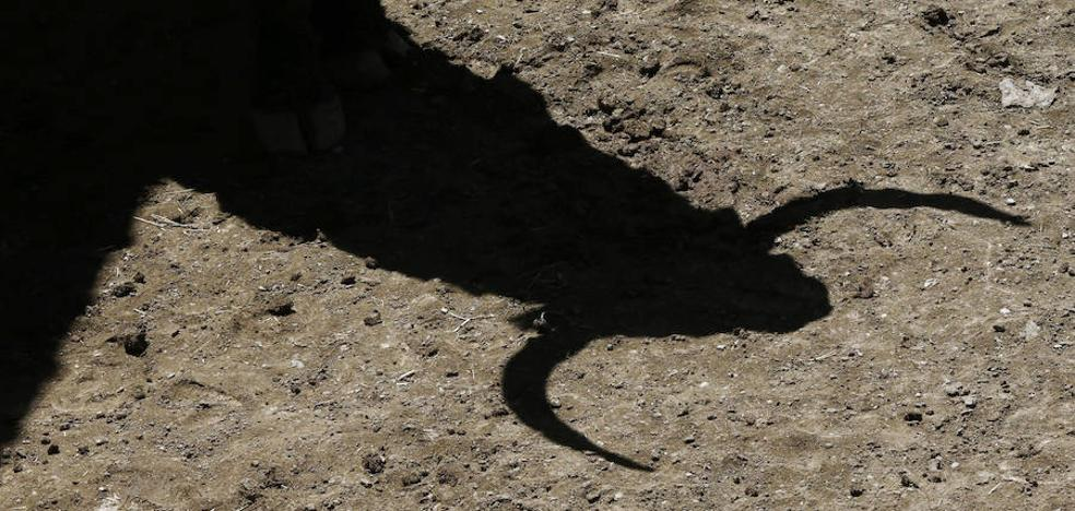 La XXVIII Feria del Toro de Olivenza tendrá grandes nombres de la tauromaquia