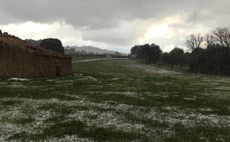 Los caminos y el campo se tiñen de blanco en Monesterio