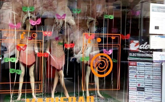Diez locales 'disfrazan' sus escaparates de Carnavalmoral