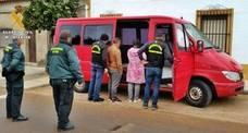 Tres detenidos en Aldea de Retamar por robar 27.000 kilos de aceitunas en olivares de Badajoz