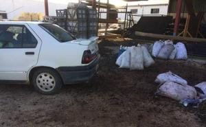 Interceptan en Almendralejo un turismo con 300 kilos de aceitunas que se iban a poner a la venta