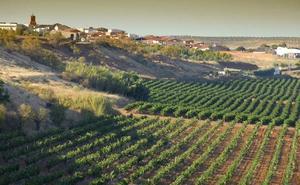 Las organizaciones agrarias consideran un «mazazo» para Extremadura el rechazo del Gobierno