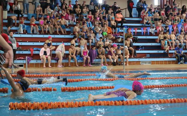 Yincana escolar de natación jueves y viernes en Mérida