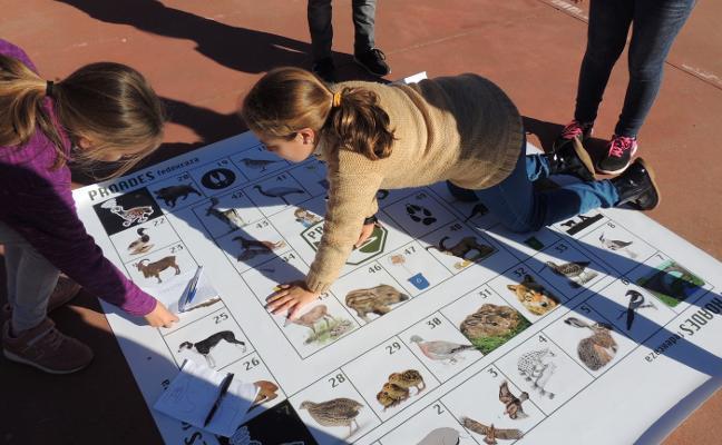 Arranca la segunda edición del proyecto escolar 'Caza y Naturaleza'