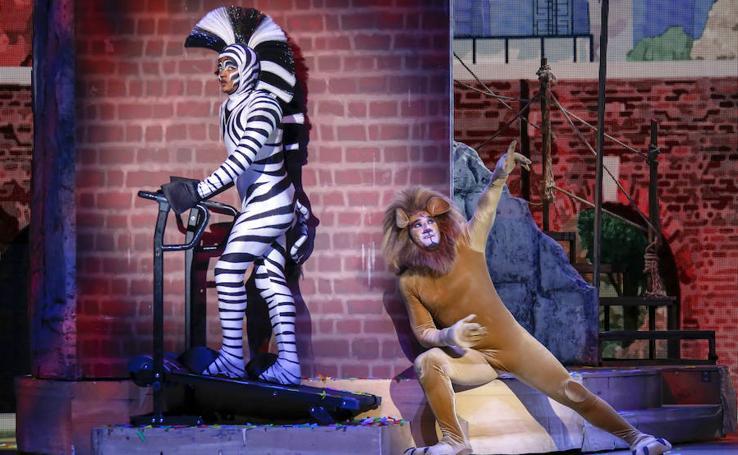 Las mejores imágenes del musical 'Madagascar'