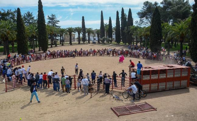El Casco Antiguo de Badajoz busca alternativa para sus primeras fiestas sin vaquillas