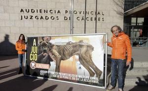 Un vecino de Piedras Albas es condenado a cuatro meses de prisión por maltratar a su perra