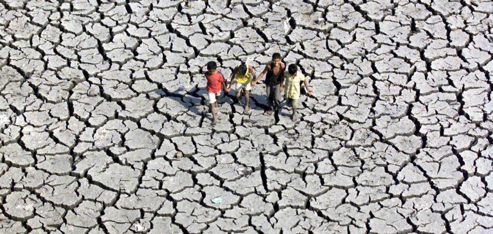 Todos contra el cambio climático