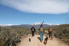 Más de 5.100 cazadores participarán en el sorteo de la oferta pública de caza