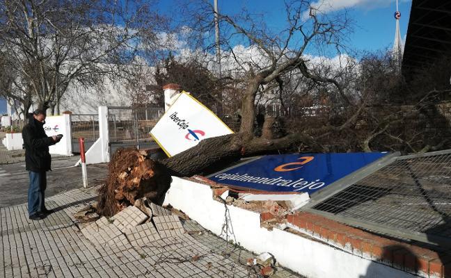 Cortes de electricidad en Talarrubias, Puebla de Alcocer y Esparragosa por el temporal