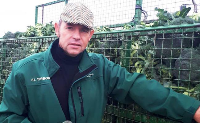 «El brócoli es rentable como segundo cultivo»