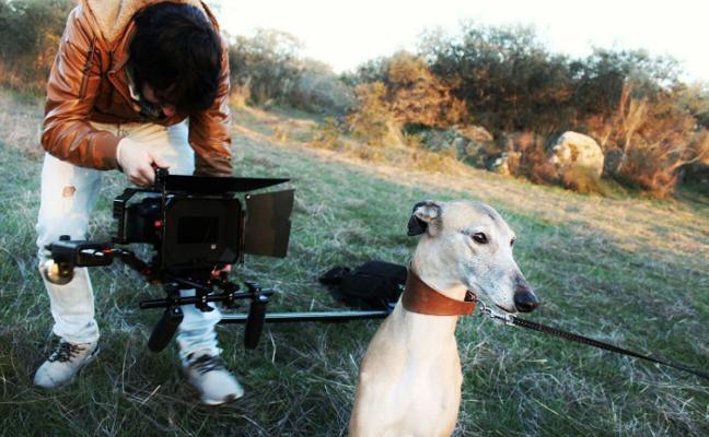 Un vídeo rodado en Villanueva sensibiliza sobre el abandono de los galgos