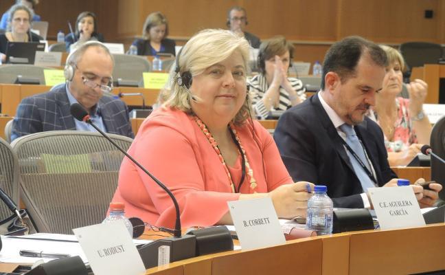 El Parlamento Europeo defiende la aceituna frente al proteccionismo de Estados Unidos