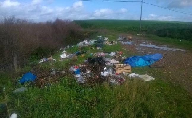 El PP solicita la limpieza de las orillas del arroyo en Casar de Miajadas