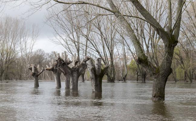 Mantienen las restricciones en los paseos fluviales por la previsión de más lluvias