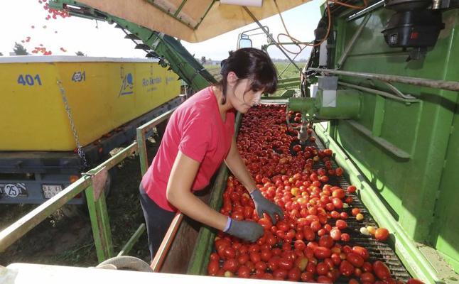 Las claves para la transformación agroalimentaria, a debate en una jornada organizada por HOY y Cesur