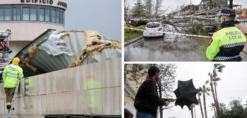 La borrasca tira árboles y tejados y deja un herido en la región