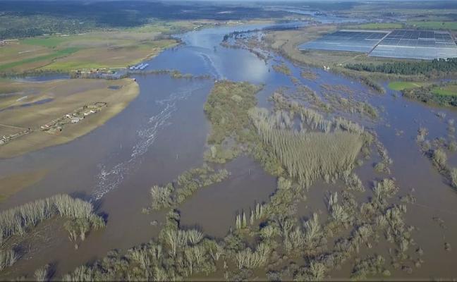 El Ayuntamiento pide que las vegas del río Tiétar sean declaradas zona catastrófica