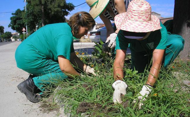 Extremadura, cuarta comunidad en producción ecológica con 94.518 hectáreas
