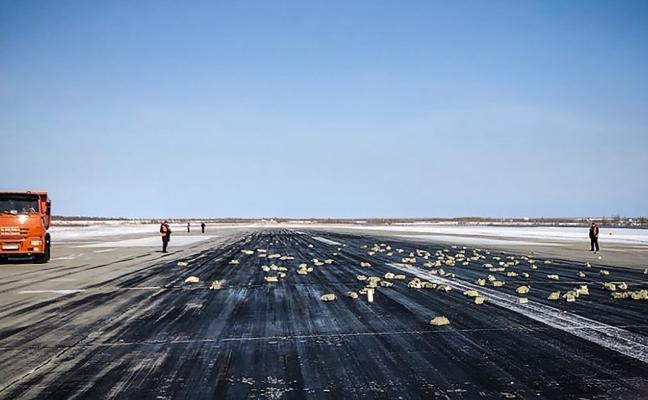 Llueve oro en Siberia