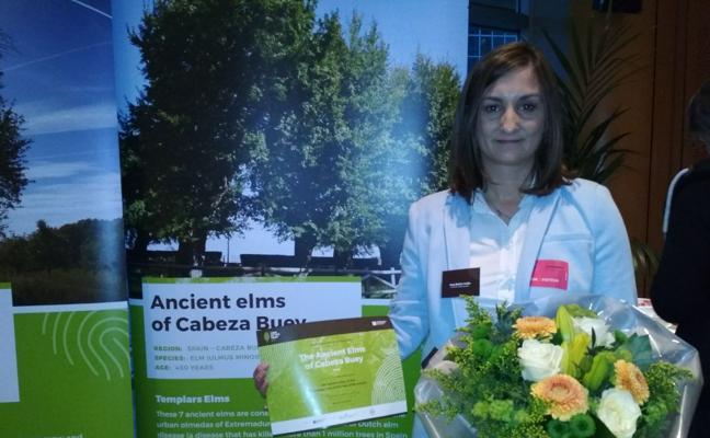Los olmos de Cabeza del Buey logran el segundo premio en el concurso Árbol Europeo
