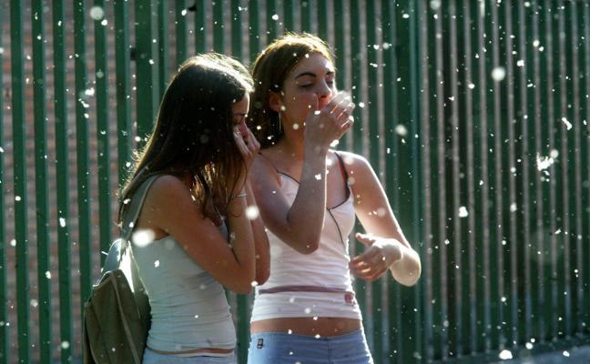Las últimas lluvias anuncian una primavera moderada para los alérgicos