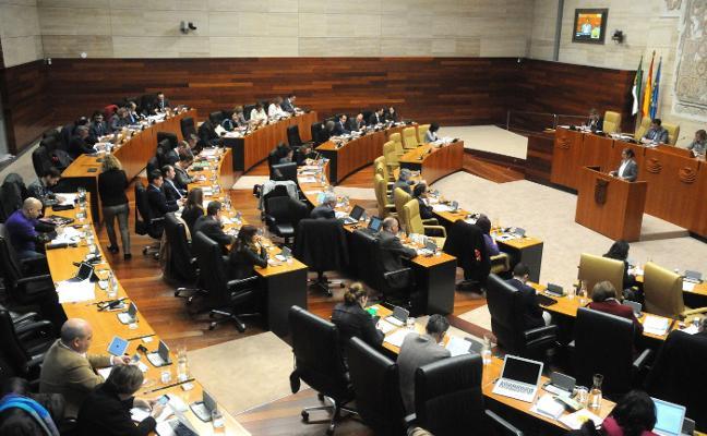La Asamblea pide ayudas directas a las asociaciones excluidas en el 0,7% del IRPF