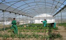 La Consejería de Medio Ambiente y Rural da luz verde a las reformas en sus centros de formación