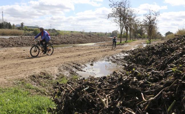La CHG revisará las orillas del río tras la retirada masiva de camalote