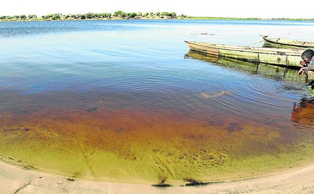 Salvar al lago Chad