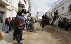 Arroyo de la Luz disfruta de su fiesta de los caballos