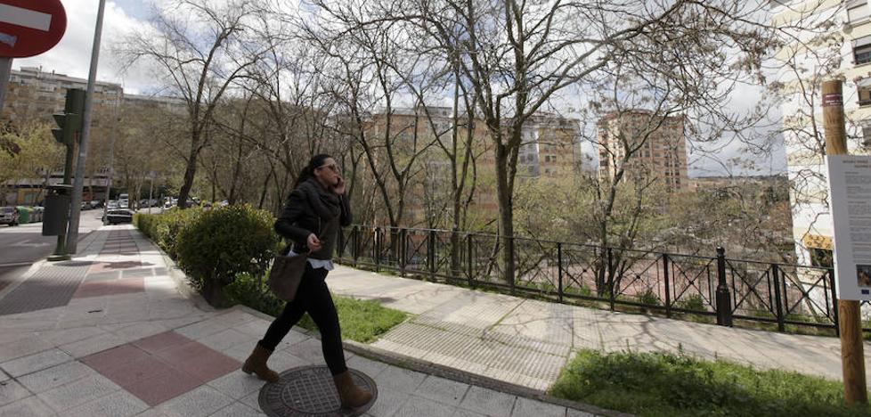 Parques y Jardines hará un chequeo del estado de los árboles de La Madrila