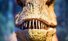 Las plantas tóxicas influyeron en la extinción de los dinosaurios