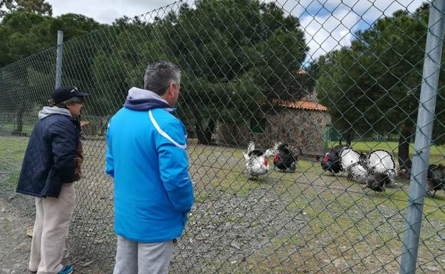 Residentes de Inclusives Villanueva visitan Las Quinientas