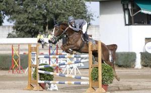 Cáceres adjudica la organización del concurso hípico de saltos por 17.490 euros