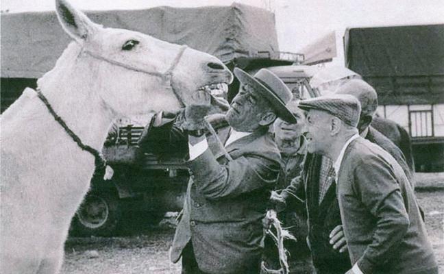 Campanario presume de tratantes de mulas