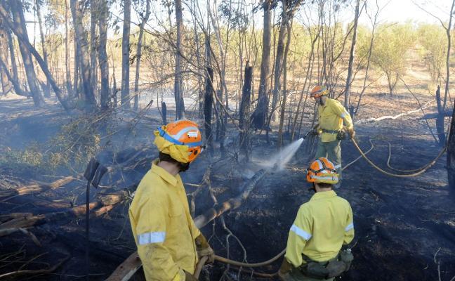 Los bomberos forestales protestarán para pedir su categoría profesional
