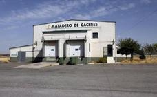 Taurica y Simón SL se postula para gestionar el matadero de Cáceres
